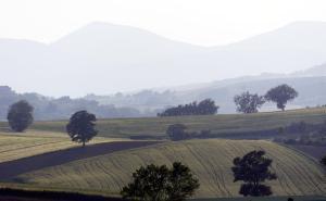 Agriturismo Il Pallocco, Farm stays  Montecastrilli - big - 86