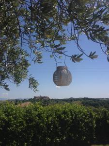 Agriturismo Il Pallocco, Farm stays  Montecastrilli - big - 84