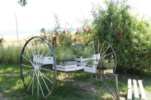 Agriturismo Il Pallocco, Farm stays  Montecastrilli - big - 87