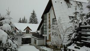 Vila Sorina - Hotel - Poiana Brasov
