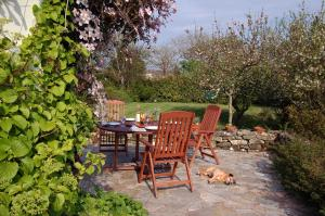 Sharamore House B&B, Bed and Breakfasts  Clifden - big - 22