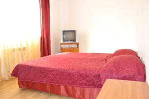 Serge Klein Mini Hotel, Hostince  Sochi - big - 20
