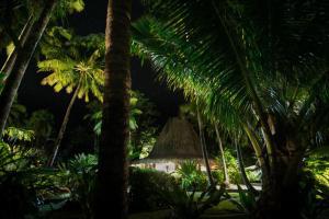 Qamea Resort & Spa (10 of 46)
