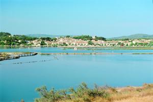 Location gîte, chambres d'hotes Azureva Sigean dans le département Aude 11