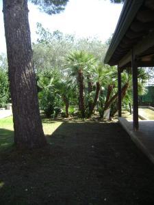 Holiday home Elena, Prázdninové domy  Ruffano - big - 6