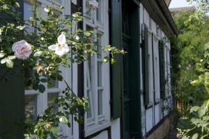 Rosindell cottage - Borgholzhausen