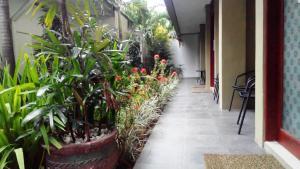 obrázek - Makassar Breeze Place Residence