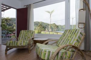 Lake View House, Vidiecke domy  Sete Cidades - big - 11