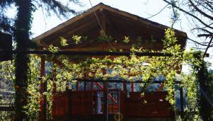Kure Dag Evi, Lodge  Ulus - big - 48