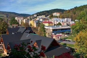 Pensjonat Lira, Penziony  Krynica-Zdrój - big - 40