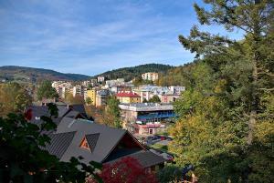 Pensjonat Lira, Penziony  Krynica-Zdrój - big - 38