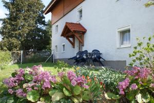 Mayerhofer House