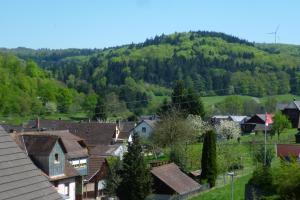 Schwarzwald Domizil Uhlsberg - Kippenheimweiler