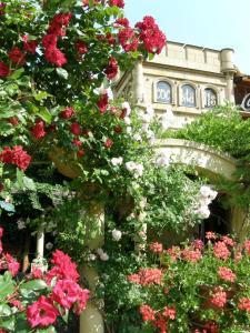obrázek - Hotel Bow Garden