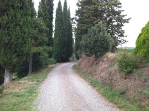 Agriturismo Fattoria Di Gratena, Agriturismi  Pieve a Maiano - big - 79