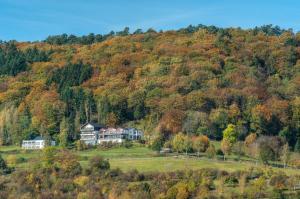 Waldhotel Sonnenberg - Holsthum