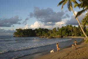 Playa Bonita Residency, Las Terrenas