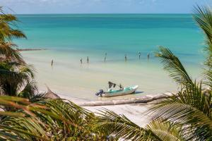 Beachfront Hotel La Palapa - Adults Only, Hotely  Ostrov Holbox - big - 51