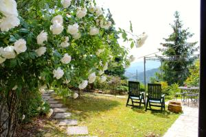 SB Bed & Breakfast - AbcAlberghi.com