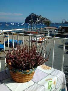 Apartment Casa Melina - AbcAlberghi.com