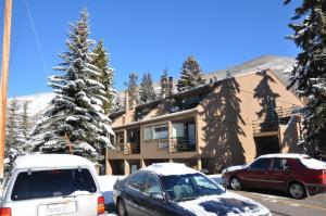 Pitkin Creek Park Condominiums by Gore Creek Properties - Apartment - Vail