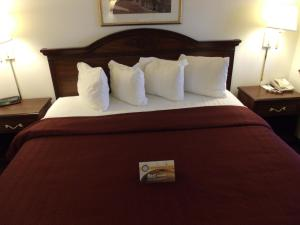Quality Inn & Suites Eldridge Davenport North, Отели  Eldridge - big - 3