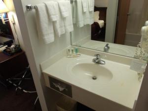 Quality Inn & Suites Eldridge Davenport North, Отели  Eldridge - big - 9
