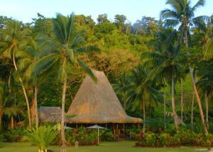 Qamea Resort & Spa (27 of 60)