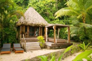 Qamea Resort & Spa (15 of 60)