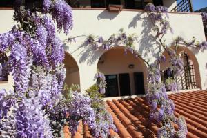 Hotel Galli, Hotels  Campo nell'Elba - big - 64