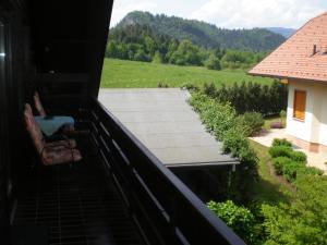 Apartments Janjusevic, Ferienwohnungen  Bled - big - 17