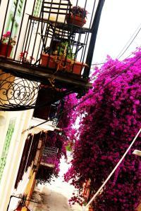 Four Seasons Pension Argolida Greece