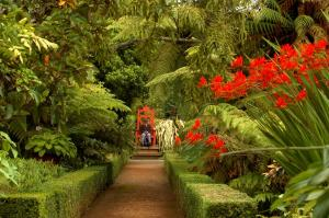 Larnach Castle (40 of 41)