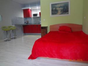 Novoshosseynaya Apartment - Andreykovo