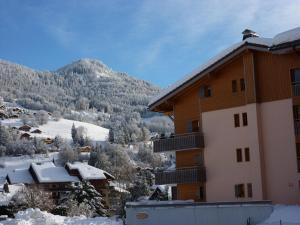 appartement in de Haute Savoie (Saint Jean de Sixt) - Apartment - Saint Jean de Sixt