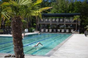 Calistoga Spa Hot Springs (3 of 28)