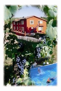 Auberges de jeunesse - La Vignola
