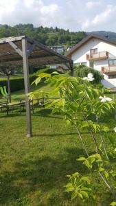 Casa Hueller - Apartment - Roncegno