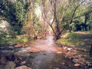 La Posada del Hobbit, Horské chaty  Villa Ventana - big - 31
