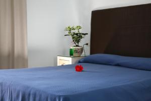 Doppel-/Zweibettzimmer mit Gartenblick