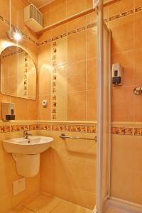 Hotel Šariš, Отели  Бардеёв - big - 7