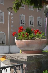 Hotel Christin, Отели  Ора - big - 14