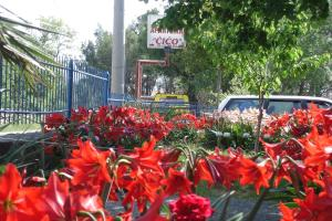 Apartments CICO Starigrad Paklenica, Ferienwohnungen  Starigrad-Paklenica - big - 76