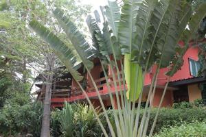 Hotel Napoleon Lagune, Hotels  Lomé - big - 68