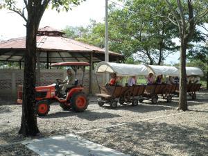 MS Campestre La Potra Plus, Hotels  Villavicencio - big - 35