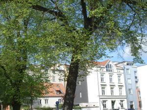 Pension Zur Fährbrücke, Hotel  Stralsund - big - 148