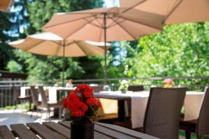 Restaurant Niedmühle Land & Genuss Hotel, Hotel  Rehlingen-Siersburg - big - 40
