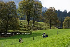 Aspen Alpine Lifestyle Hotel, Hotely  Grindelwald - big - 62