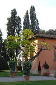 Villa Mangiacane, Hotely  San Casciano in Val di Pesa - big - 52