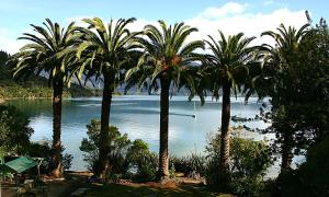 obrázek - Te Mahia Bay Resort